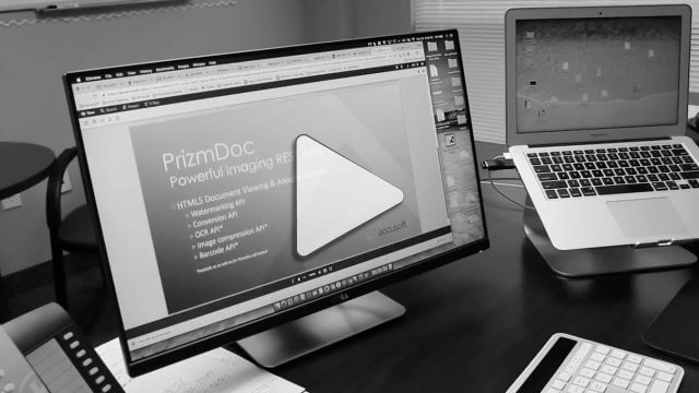 Native Rendering of Microsoft Office Documents with PrizmDoc